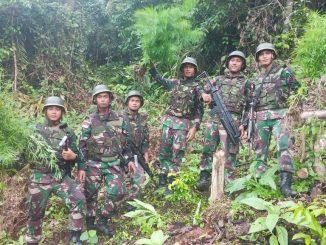 Berhasil Temukan Ladang Ganja, Pangdam I/BB Apresiasi Satgas Pamtas Yonif 126 KC/theeast.co.id