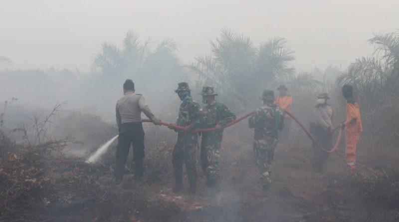 TNI Perang Melawan Asap Di Lahan Gambut/theeast.co.id