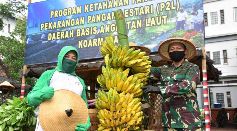 Panen Raya, Penebaran Benih dan Penyerahan Bibit Tanaman di Koarmada II, Mendukung Program Ketahanan Pangan, Pekarangan Pangan Lestari (P2L)/theeast.co.id