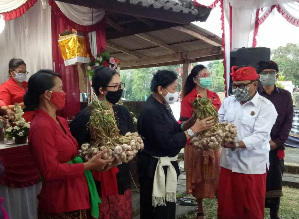Ny. Rai Wahyuni Sanjaya Dampingi Ny. Putri Suastini Koster Panen Raya di Babahan/theeast.co.id